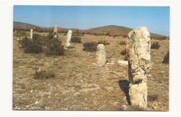 ENVIRONS DU CIRQUE DE NAVACELLES MENHIRS ALIGNES EN CERCLE - Dolmen & Menhirs