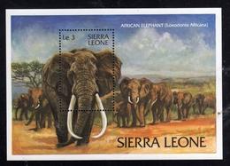 SIERRA LEONE 1983 WILD FAUNA AFRICAN ELEPHANT ELEFANTE AFRICANO BLOCK SHEET BLOCCO FOGLIETTO MNH - Sierra Leone (1961-...)