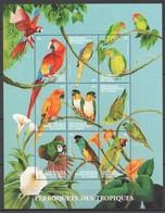 H1832 DU CONGO BIRDS PARROTS PERROQUETS DES TROPIQUES 1KB MNH - Parrots