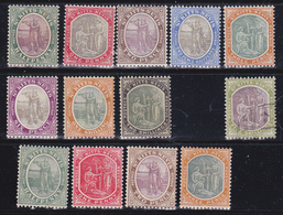 St.Cristopher-Nevis 1903.1918  MLH*  Us - St.Cristopher-Nevis & Anguilla (...-1980)
