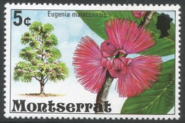Montserrat. 1976 Flowering Trees. 5c MH. SG 374 - Montserrat