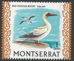 Montserrat. 1970 Birds. 1c MH. SG 242 - Montserrat