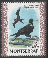 Montserrat. 1970 Birds. 3c MH. SG 244 - Montserrat