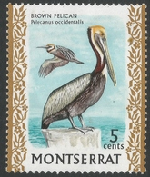 Montserrat. 1970 Birds. 5c MH. SG 299a - Montserrat