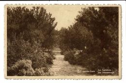CPA - Carte Postale -Belgique- Knocke-Les Sapinières -VM560 - Knokke