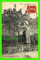 HYÈRES (83) - CUEILLETTE DES ORANGES - AGENCE GÉNÉRALE DES JOURNAUX - CIRCULÉE EN 1909 - - Hyeres