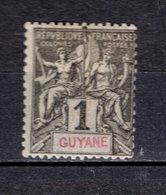GUYANE  N° 30  NEUF  AVEC CHARNIERE  COTE  2.20€  TYPE GROUPE - Neufs