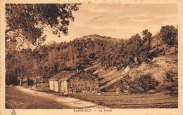 ¤¤  -   ALGERIE    -  YAKOUREN   -  La Forêt   -  ¤¤ - Algérie