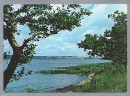 DK.- Parti Fra Mossø. View Of Mossø. Partie Von  Mossø. 1991 - Denemarken