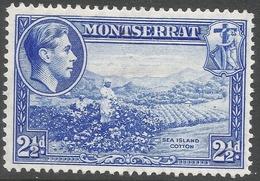 Montserrat. 1938-48 KGVI. 2½d MH. P14 SG 105a - Montserrat