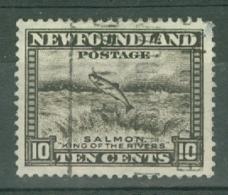 Newfoundland: 1932   Pictorial  SG215     10c      Used - Newfoundland