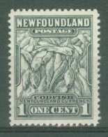 Newfoundland: 1941/44   Pictorial  SG276   1c   [Perf: 12½]   MH - Neufundland