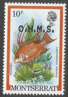 Montserrat. 1981 Official. 10c MNH. SG O43 - Montserrat