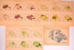 1893 Az Országos Cigány-összeírás Néprajzi Térképei. 4 Db Nagyméretű (48x35 Cm) + 1 Térképlap - Cartes