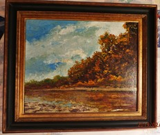 Par  Emile SIMONOD :  DANS LES MARAIS DE LA MOTTE SERVOLEX   Peintre Savoyard  HUILE SUR PANNEAU - Huiles