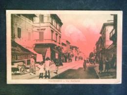 TOSCANA -LUCCA -VIAREGGIO -F.P. LOTTO N°371 - Lucca