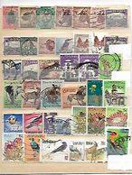 AFRICA DEL SUR - África Del Sur (1961-...)