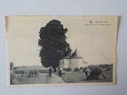 Ancienne CP Zétrud-Lamay Chapelle De N.D. De Bon-secours - Geldenaken