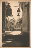 W1125/27 San Giovanni D'Acri Acco Akko - Camii Mosque Moschea Moschee Mosquée Museo Coloniale Fotografie Della Palestina - Israele