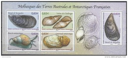 TAAF 2014 Yvert F697 Neuf ** Cote (2015) 6.50 Euro Mollusques - Blocs-feuillets