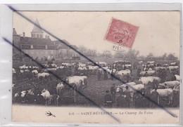 Saint-Révérien (58) Le Champ De Foire - Unclassified