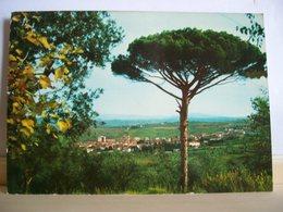 1974 - Pisa - Casciana Terme - Panorama - Ed. Dilvo Dini - Pisa