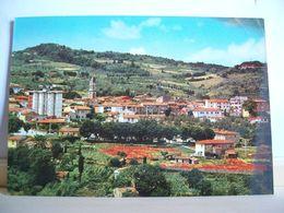 1974 - Pisa - Casciana Terme - Panorama  Da Levante - Ed. Lilia Miliani - Pisa