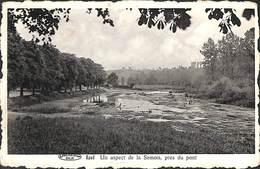 Izel - Un Aspect De La Semois, Près Du Pont (1949) - Chiny