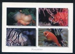 MALDIVES  - Clownfish & Scorpionfish. Postmark AIRPORT OFFICE On Flower Stamp - Maldives