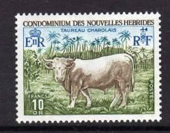 Nouvelles Hébrides N° 408 XX Taureau Charolais Légende  Française, Sans Charnière, TB - Nouvelles-Hébrides