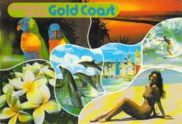 ** Lot Of 2 Postcards ** AUSTRALIA ( Queensland ) GOLD COAST And BROADBEACH - CPSM Grand Format - Australie - Gold Coast