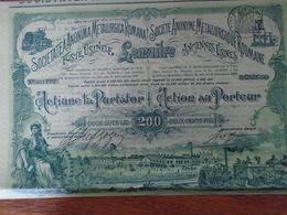 ROUMANIE - SA METALLURGIQUE ROUMAINE - ACTION DE 200 FRS -1898 - BELLE ILLUSTRATION - Shareholdings