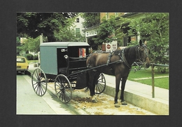 PENNSYLVANIA - AMISH COUNTRY - AN ANISH CARRIAGE TIED TO A HITCHING POST OUTSIDE ONE OF THE BUSINESS PLACES - Other