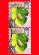 UCRAINA  - Usato - 2013 - Piante - Gelso Bianco - Morus Alba -  N - 2013-II - Ucraina