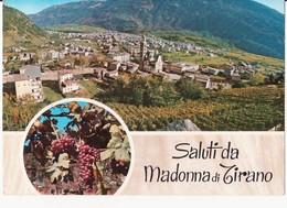 CARTOLINA SALUTI DA MADONNA DI TIRANO - VEDUTA - UVA - 1975 - Saluti Da.../ Gruss Aus...