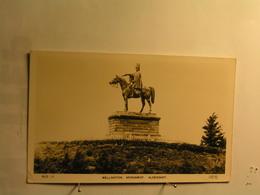Aldershot - Wellington Monument - Autres