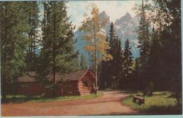 CPSM: WYOMING (etats-unis): Official Grand Teton Lodge Company Card.      (E1432) - Etats-Unis