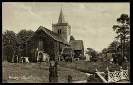 Ref 1275 - Early Postcard - Witley All Saints Church & Graveyard - Surrey - Surrey