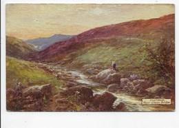 Dartmoor, Near Okery Bridge - Tuck Oilette 7633 - England