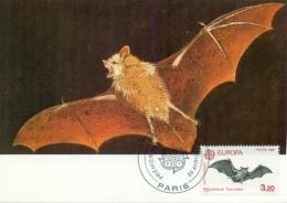 CM-Carte Maximum Card # France-1986 # Europa-Cept # Animaux,animals,Tiere # Chauve-souris,Fledermaus,bat # Paris - Cartes-Maximum