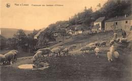 Namur Namen Rochefort  Han Sur Lesse    Promenade Des Jambons D'Ardenne   Varkens Porc Porque        I 5669 - Rochefort