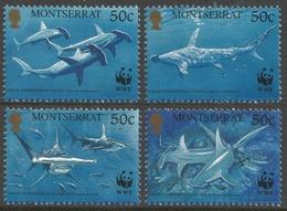 Montserrat. 1999 Endangered Species. Great Hammerhead Shark. MNH Complete Set. SG 1148-1151 - Montserrat