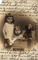 Dogs, Dachshund In A Crate With A Baby And A Little Girl, Old Postcard 1904 - Dogs