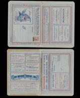 ITALIE Entiers  BLP - Série: 22 LAZIO/aigle*/vin*/cafe/glace/or/ Parfum/fruit/argent/couteau/biscotte/peaux/text./pharm. - 1900-44 Victor Emmanuel III.