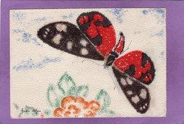 Les Papillons De France Callimorphe Dessin De André Stefan Illustrateur - Papillons