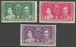 Newfoundland. 1937 KGVI Coronation. MH Complete Set SG 254-256 - 1865-1902