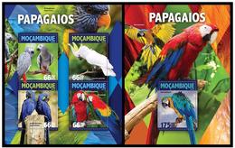 Mozambique 2016 Fauna Birds Parrots Klb + S/s MNH - Parrots