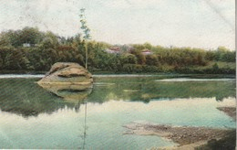 """The """"Lone Pine"""" St. Francis River, Sherbrooke, Quebec - Sherbrooke"""