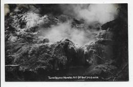 Twins Geyser.Wairakqi, N.Z.(At Rest) - F.G.R. 4469 - New Zealand