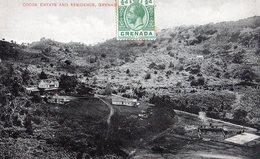 GRENADA:Cocoa Estate And Résidence,Grenada,en1917,tbe - Grenada